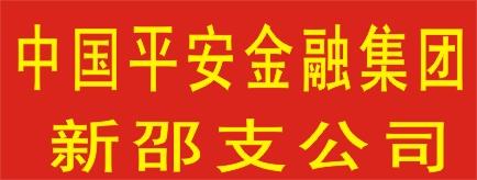 中国平安综合金融集团新邵支公司-娄底招聘